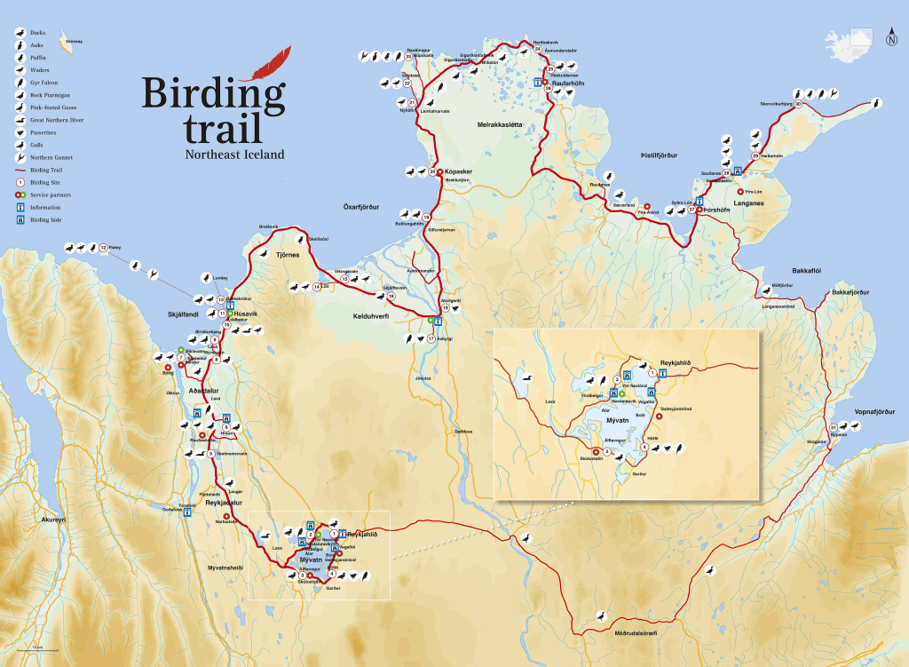Bird trail map