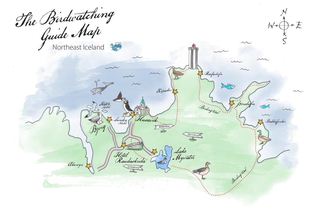 map_birds