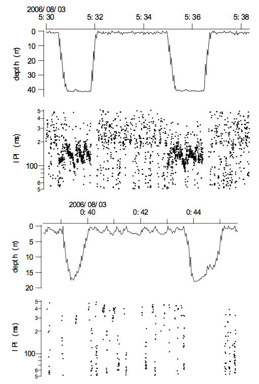 Examples of U-shape dives (upper figure) and V-shape dives (lower figure) including interpulse (click)-intervals (IPI) in ms for both. The jagged traces in the depth curves are caused by the sampling routine of the TDR unit. Note the presumed feeding bouts in U-shaped dives characterized by reducing IPI (see also Figure 7). Note the smaller number of clicks during V-shaped dives comparing with U-shaped dives. Dots near the surface are triggerings caused by splash noise, which were excluded before the analysis in Table 1 using the filtering procedure mentioned in the methods.