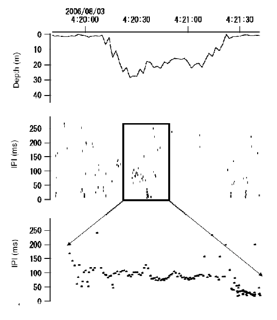 Example of a possible foraging dive. The figure shows an example of a single U- shaped dive, where interpulse (click)-intervals (IPI) are decreasing from 100 ms to 2 ms at a depth of 18 m. The lower part of the figure shows a close up of the decreasing click-intervals during a possible foraging attempt. The jagged traces in the depth curves are caused by the sampling routine of the TDR unit.